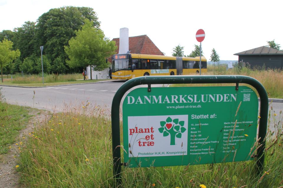 Датская роща (Danmarkslunden Moesgaard), Орхус, Дания. 2 июл. 2021