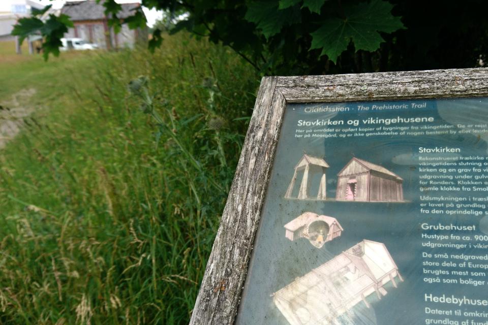 Старый информационный щит возле тропинки, ведущей к деревянной церкви викингов Хёрнинг, г. Орхус, Дания. Фото 2 июл. 2021