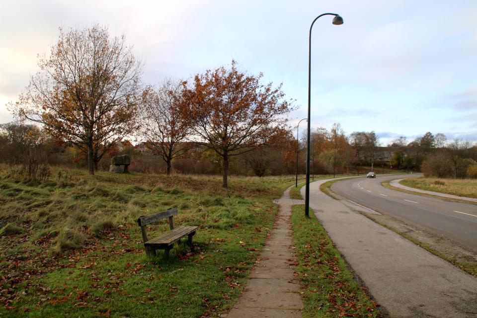 Дольмен воссоединения Дании в Биркерёд (Genforening Birkerød), Дания. Фото 10 нояб. 2019
