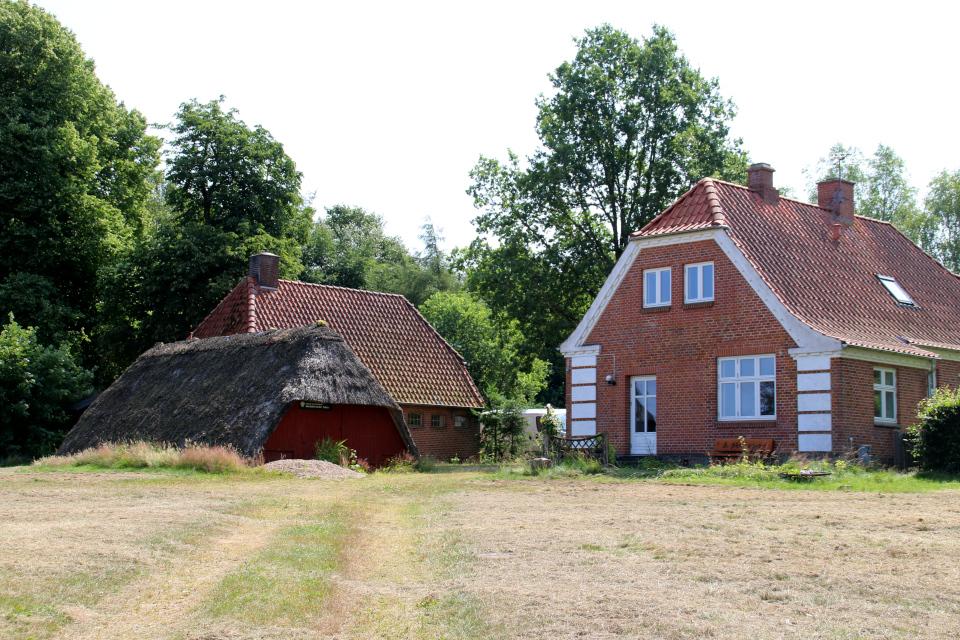 Дома работников леса. Озеро Хампен (дат. Hampen sø), Дания. Фото 18 июля 2021