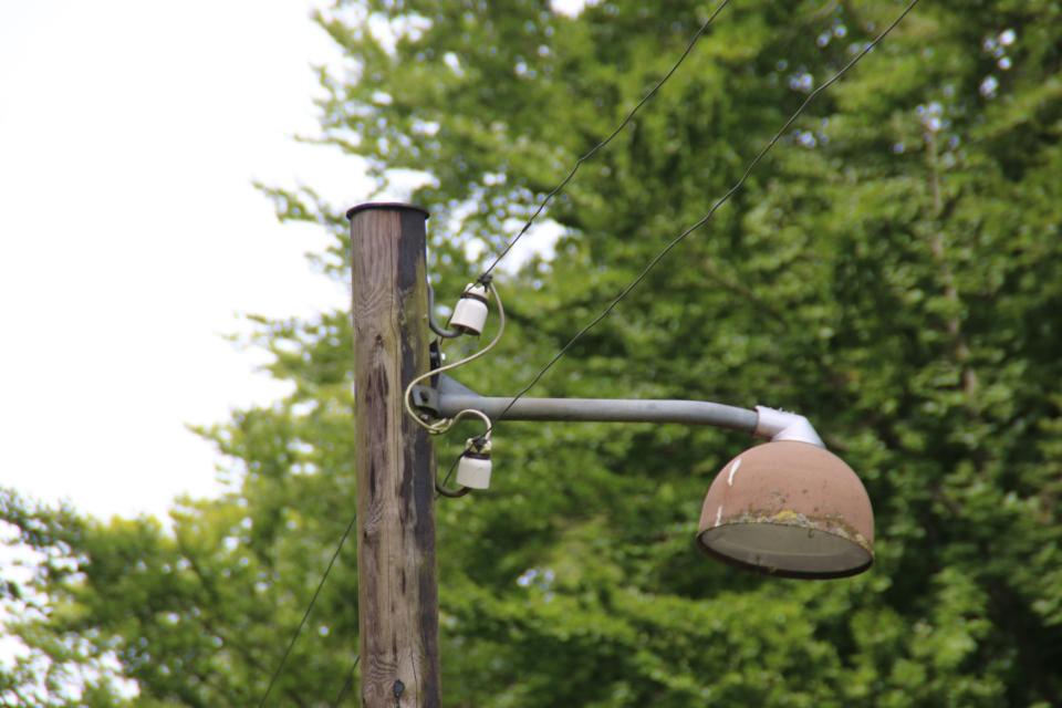Лесопарк Охотничьи угодья в Северной Зеландии, Дания. 9 июля 2021