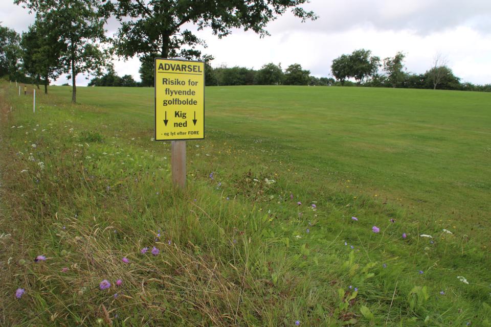 Гольф-поле Вайен, Дания. Фото 28 июля 2021