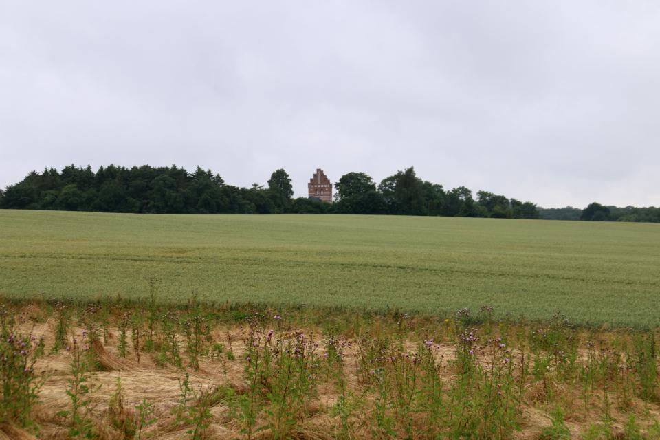 Вид на церковь со стороны тропинки, ведущей к месту кругового замка викингов Боргринг, Леллинге / Кёге, Дания. Фото 10 июл. 2021
