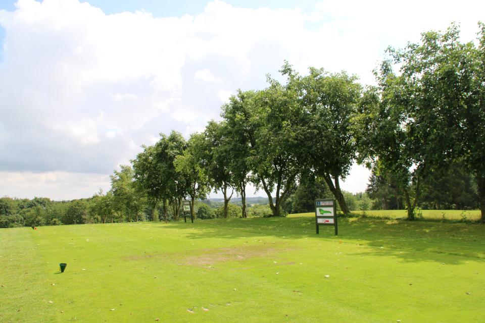 Alnus. Гольф-поле Вайен, Дания. Фото 28 июля 2021