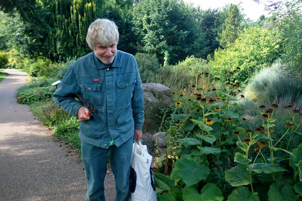 Поуль Эрик на каменистых горках ботанического сада г. Орхус, Дания. Фото 4 авг. 2021