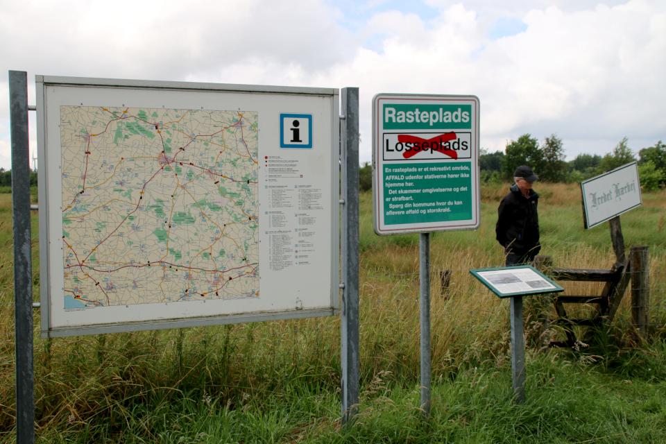 Охраняемая часть Хэрвайн (Fredet hærvej, Bække), Бэкке, Дания. Фото 28 июл. 2021