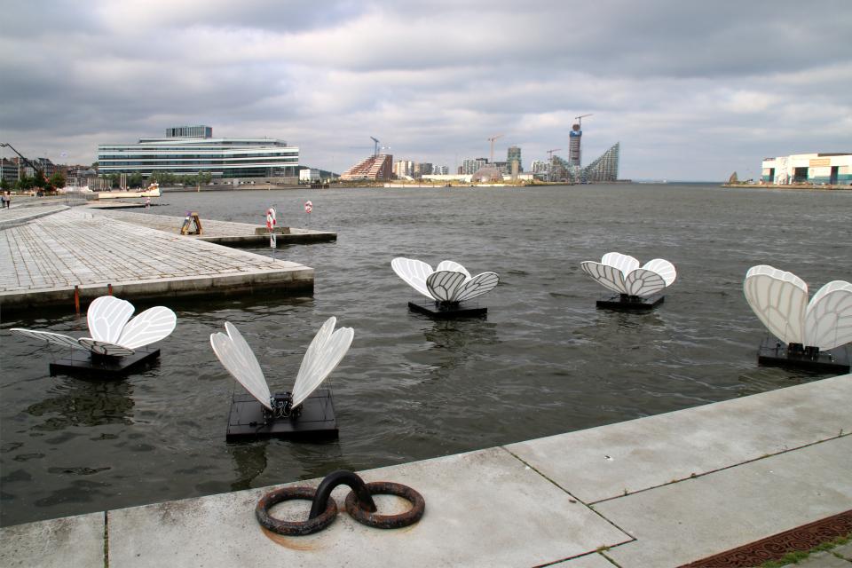 Праздничная неделя Орхус - бабочки и одуванчики, Butterfly Effect, Aarhus Festuge, Дания. Фото 29 авг. 2021