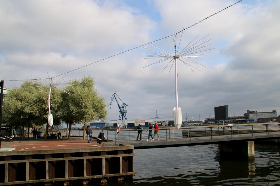 Праздничная неделя Орхус - бабочки и одуванчики, Light a Wish, Aarhus Festuge, Дания. Фото 29 авг. 2021