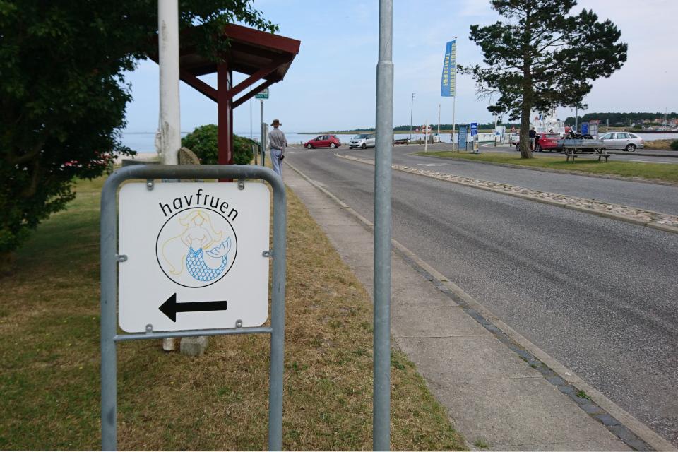 Магазин Русалочка. Фьорд Рандерс. Удбюхой (Udbyhøj, Havndal), Дания. Фото 28 июля 2021
