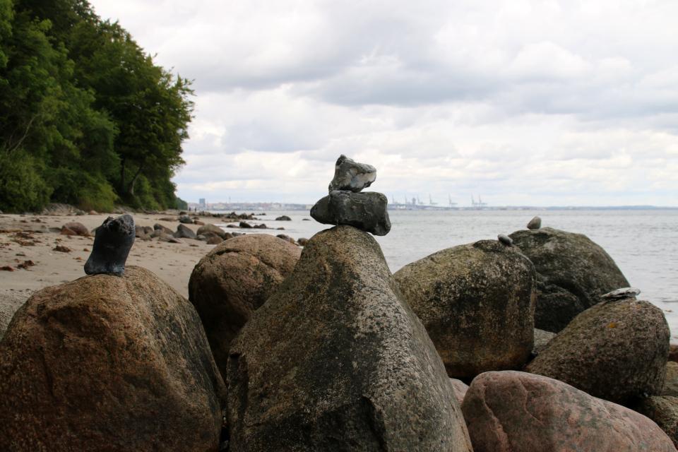 Сейд - берег леса Марселисборг, Орхус, Дания. Фото 15 авг. 2021