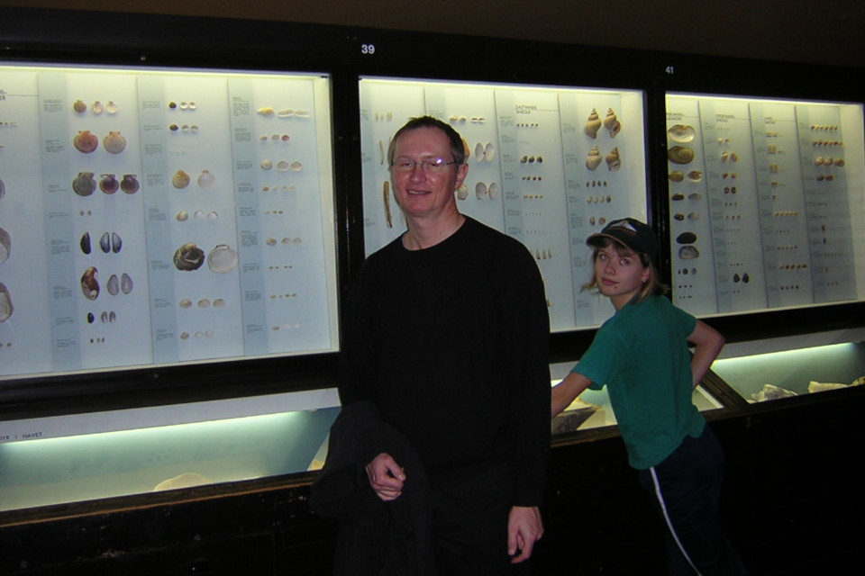 Екатерина Полякова, раковины моллюсков. Музей естественной истории Орхус, Дания (Naturhistorisk Museum Aarhus). Фото 17 дек. 2004