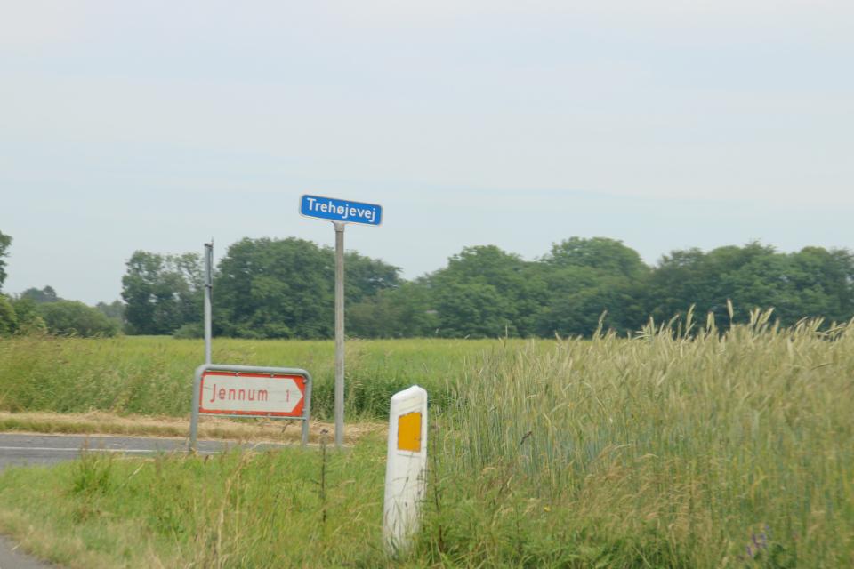 Jennum Trehøjvej, Муниципалитет Рандерс, дорога к Удбюхой, Дания. Фото 28 июля 2021