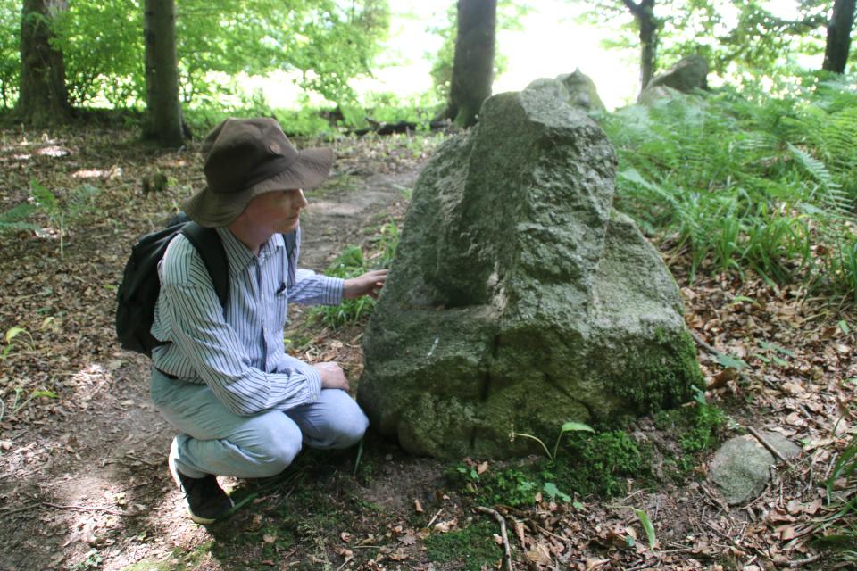 Колотые камни (rillesten). Удлиненный дольмен Колдинг (langdysse Kolding), Дания. Фото 12 июл. 2021