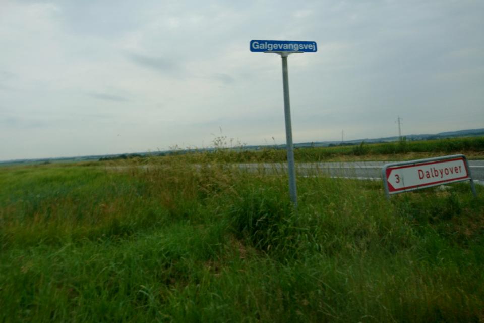 Galgevangvej landevej, Dalbyover. Муниципалитет Рандерс, дорога к Удбюхой, Дания. Фото 28 июля 2021