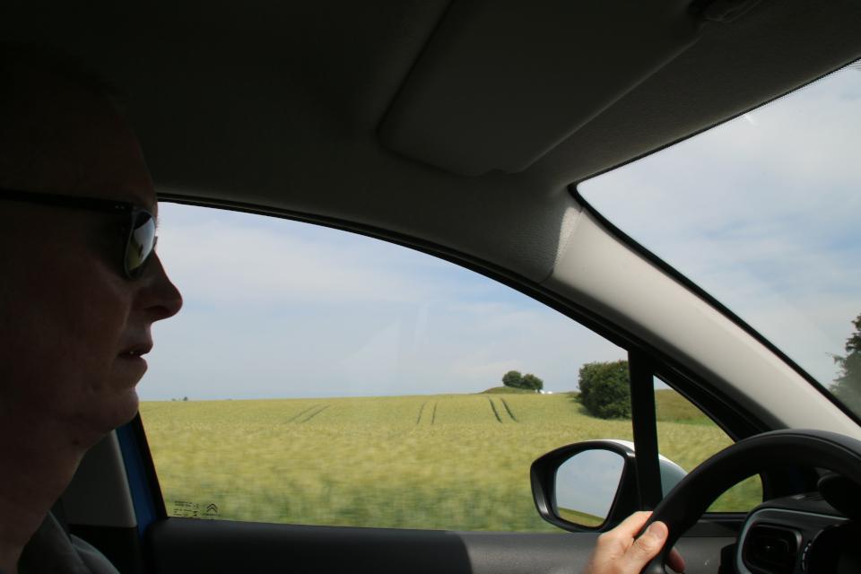 Курган. Муниципалитет Рандерс, дорога к Удбюхой, Дания. Фото 28 июля 2021
