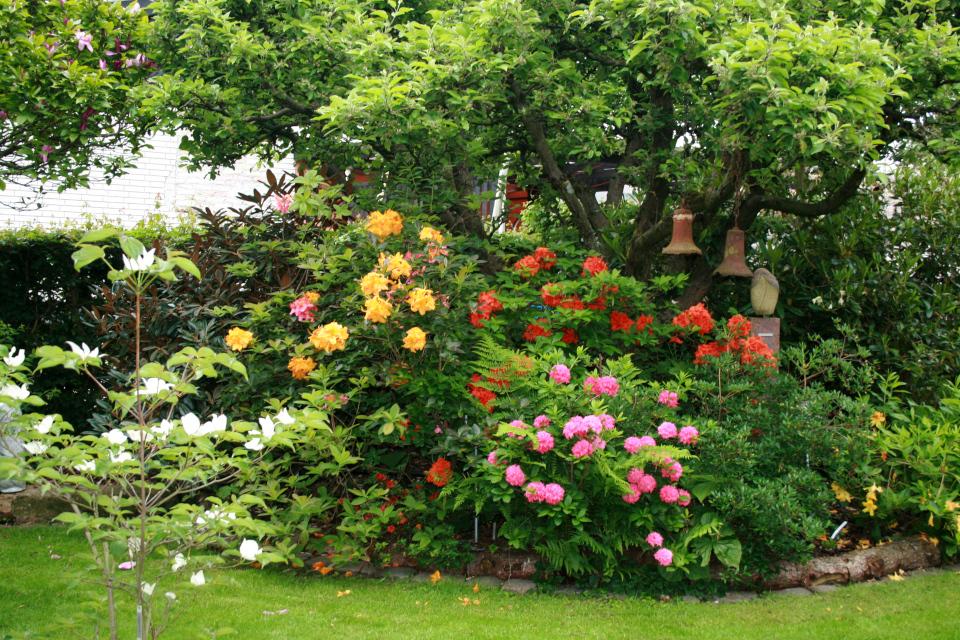 Сад Йенс Кёэ (Jens Kjøge), Ørnegårdsvej 17, Хойбьерг, Дания. Фото 28 мая 2011