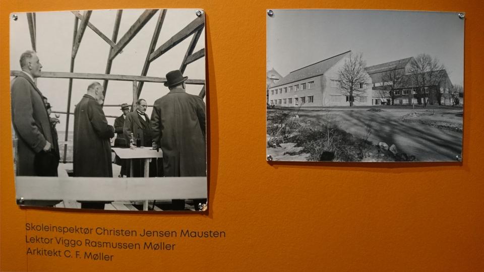 Ch. J. Mausten,Viggo R. Møller, Музей естественной истории Орхус, Дания (Naturhistorisk Museum Aarhus). Фото 29 авг. 2021