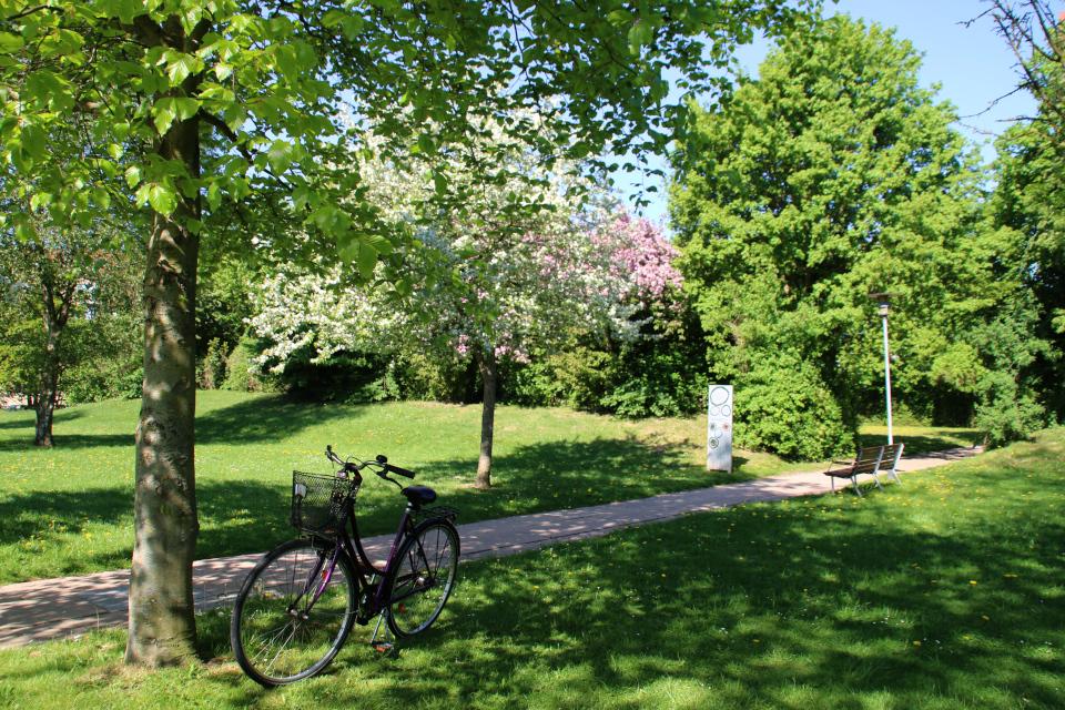 Парк больницы Марселисборг. Деревья замаскировали подземные бомбоубежища. Фото 15 мая 2018, г. Орхус, Дания