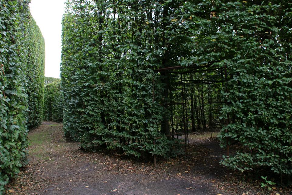 Лабиринт. Геометрическе сады в Хернинг (De Geometriske Haver Herning), Дания. Фото 14 сент. 2021