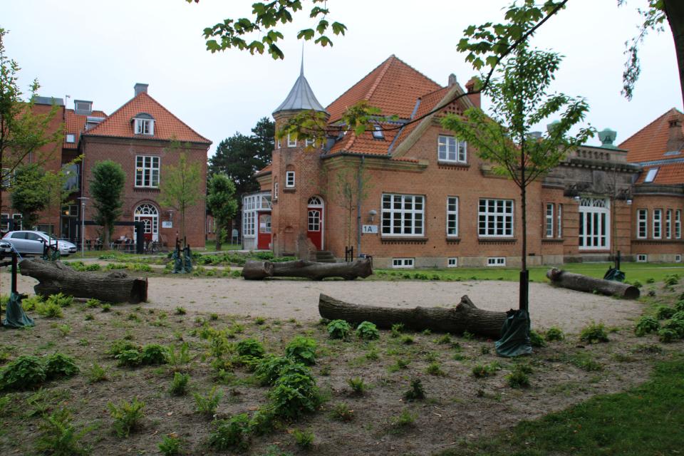 Отель насекомых. Дождевой парк Спарк (Spark rain park, Marselisborg center), Орхус, Дания. Фото 2 сент. 2021