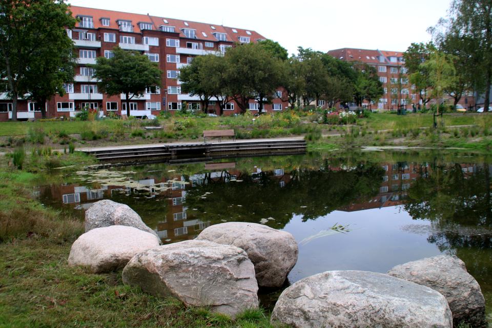 Пруд. Дождевой парк Спарк (Spark rain park, Marselisborg center), Орхус, Дания. Фото 2 сент. 2021