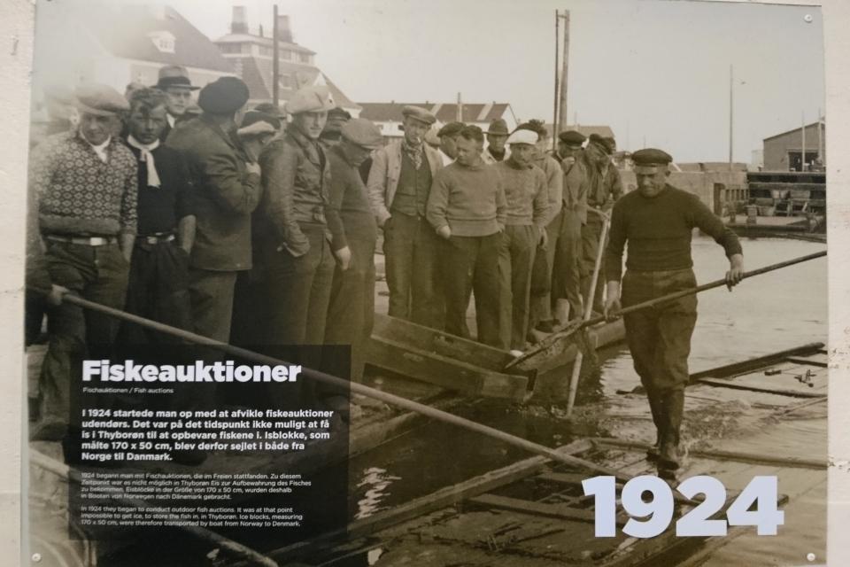 Рыбный аукцион. Музей ледяного искусства Тюборён (Iskunsten Thyborøn), Дания. Фото 25 сент. 2021