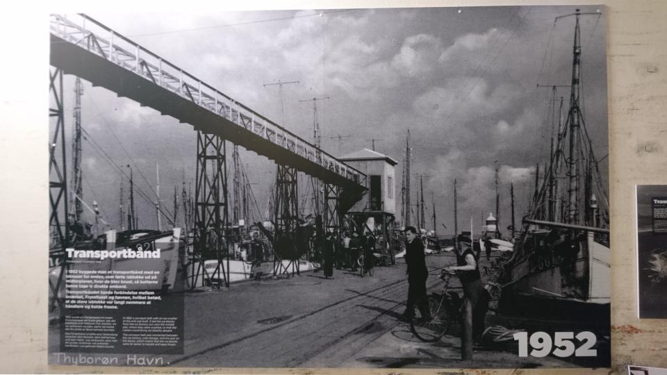 Мост для транспортировки льда в порт. Музей ледяного искусства Тюборён (Iskunsten Thyborøn), Дания. Фото 25 сент. 2021