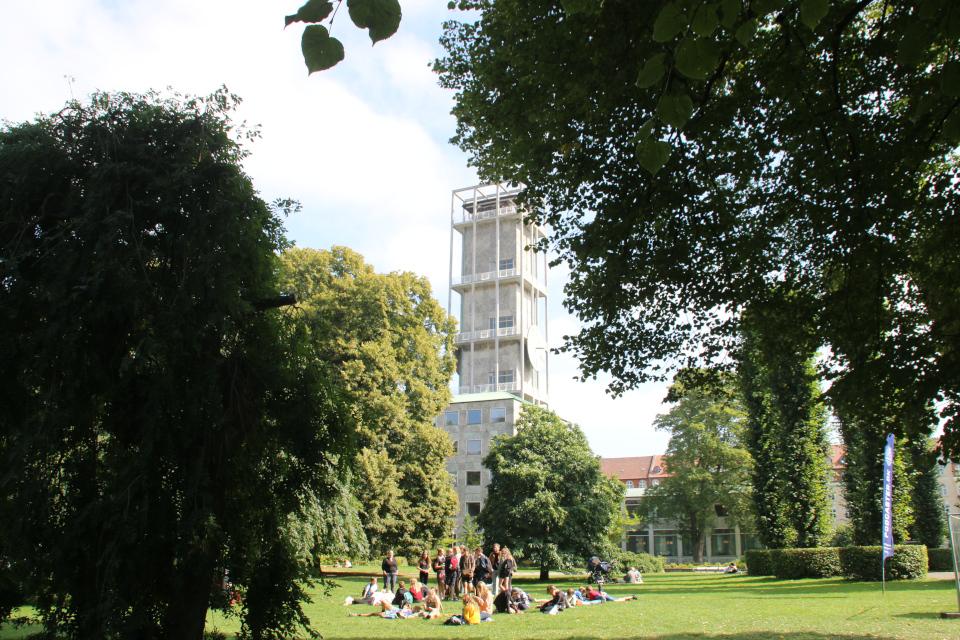 Праздничная неделя Орхус 2021, в парке ратуши, Дания. Фото 2 сент. 2021