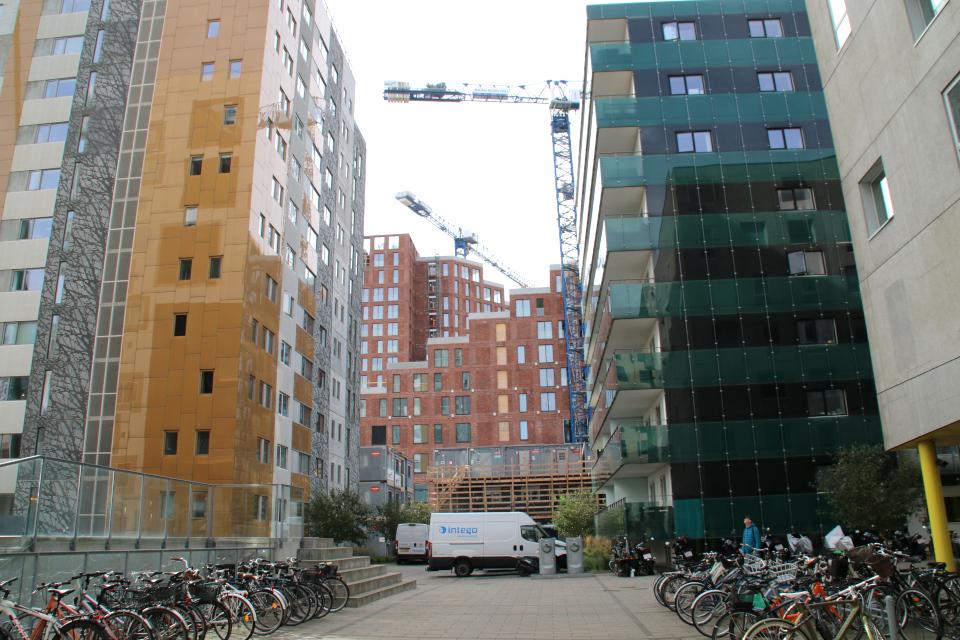 Орхус Доклендс 29 сентября 2021 (Aarhus Ø), Дания