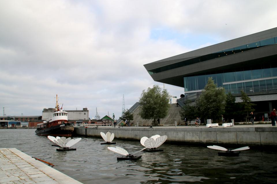 DOKK1. Орхус, Дания. Фото 2 сент. 2021