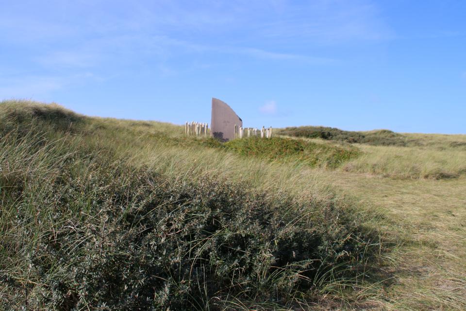 Облепиха Мемориальный парк Тюборён (Mindeparken Thyborøn), Дания. Фото 25 сент. 2021