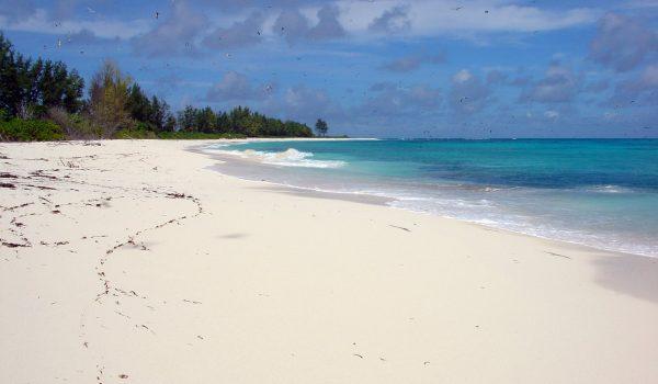 Auf die Malediven für nur 325€ (hin und zurück)