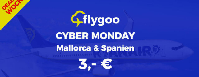 Cyber Monday bei flygoo.de