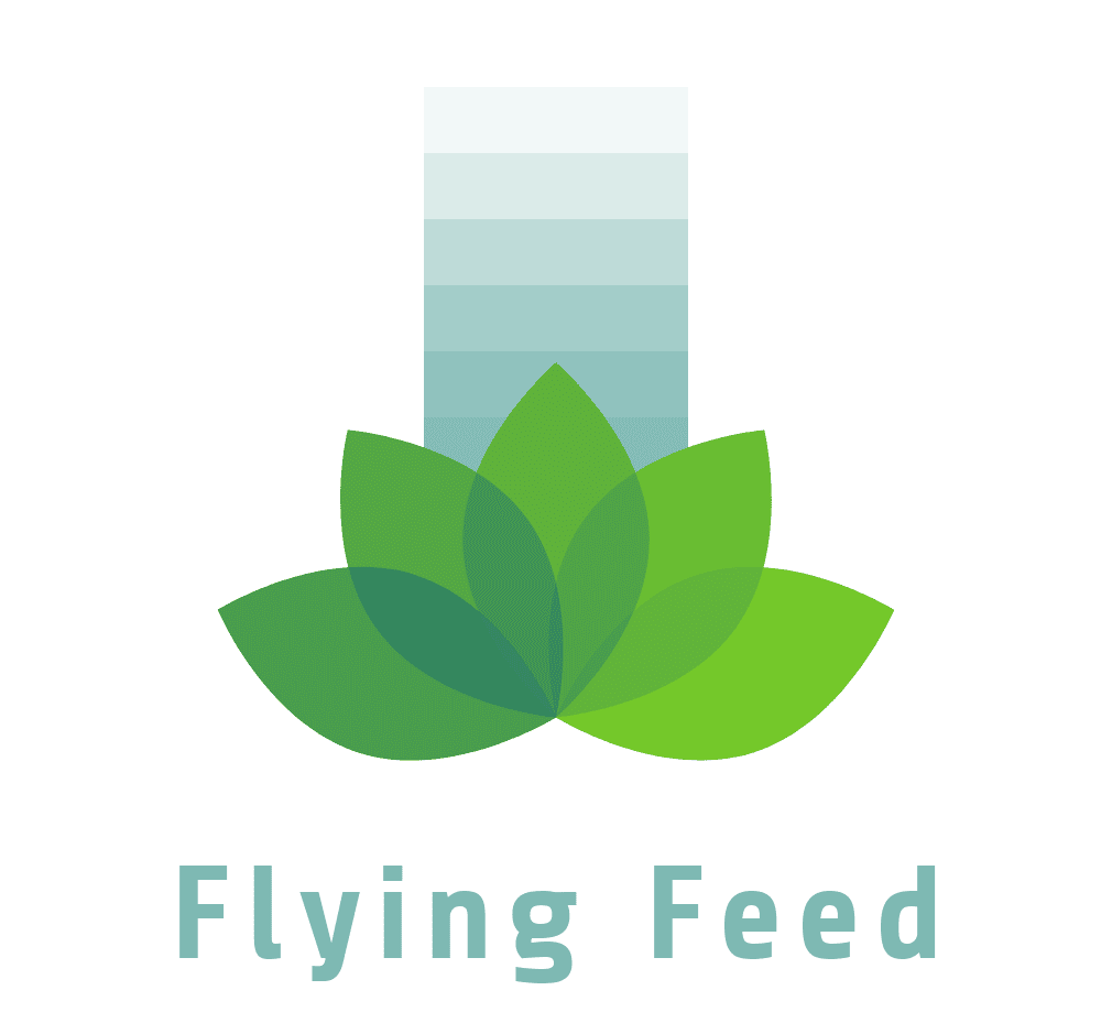 Flying Feed