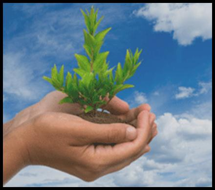 Logo green hope somalie