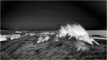 Dunes © Ann Bonte