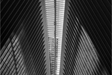 Kathedraal © Sonja Van Aerde