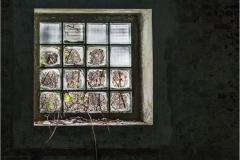Broken glass © Marc Ganseman