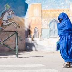 The Lady in Blue © Patrick Haegens