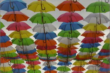 Regenvrije straat © Wim Laureys