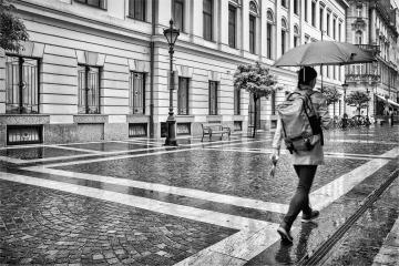 Rainy street © Christa Martens