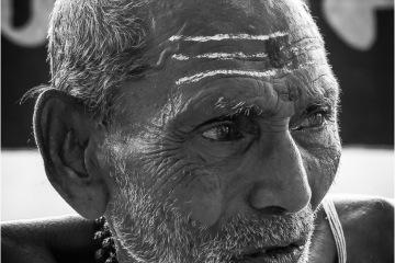 De bronbewaker © Jan Baccaert