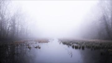 Foggy © Jorn Brewaeys