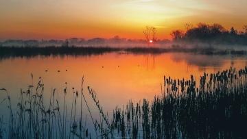 Nevelige zonsopgang