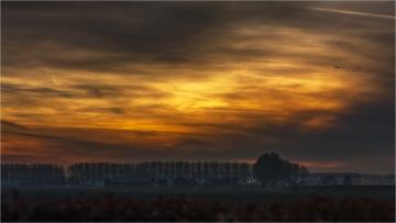 Winteravond in de polders © Robert Van Maele