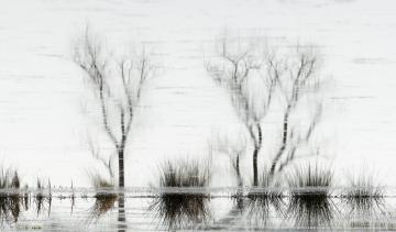 Alles vervloeit © Steven Warmoes