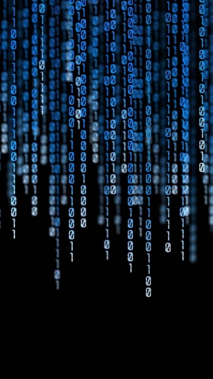 ettor och nollor i ett datasystem är pengar