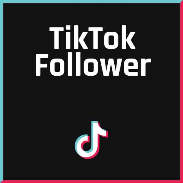 FollowerPilot 100 TikTok Follower Kaufen