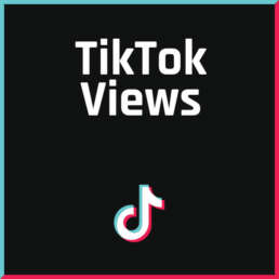 FollowerPilot TikTok Views Kaufen