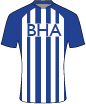 brighton and hove albion match jersey